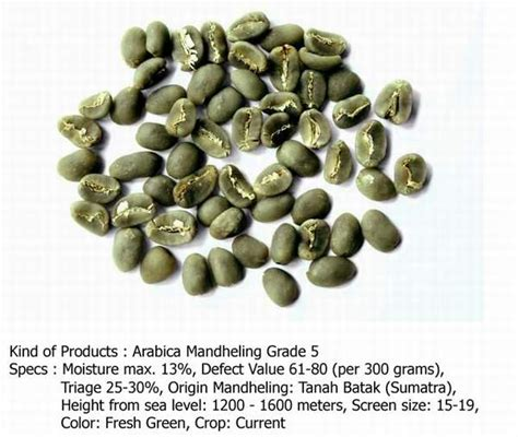 arabica mandheling grade 5 coffee beans buy coffee beans arabica coffee beans