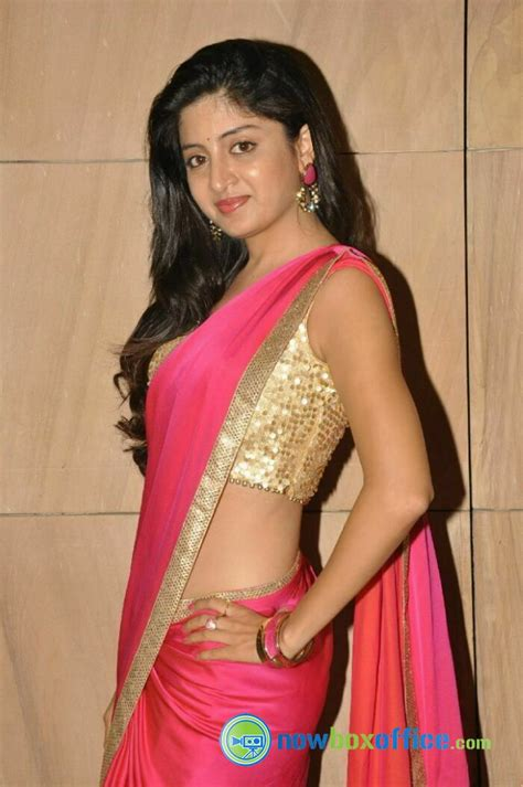 the gallery collection poonam indian actress in saree collection poonam kaur new saree