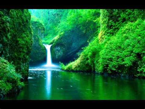 imagenes y sonidos relajantes sonido de agua y pajaros estudiar meditar mente en