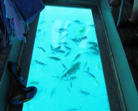 glass bottom boat tanjung benoa yuk ajak si kecil berlibur ke turtle island bali wisata bali