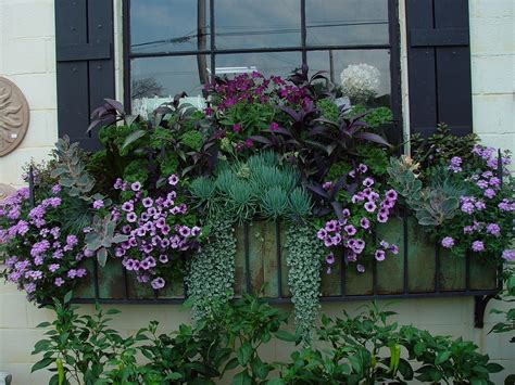 window flower box design indoor flower box ideas