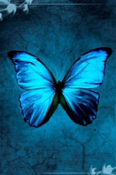 butterflies   wallpaper  android