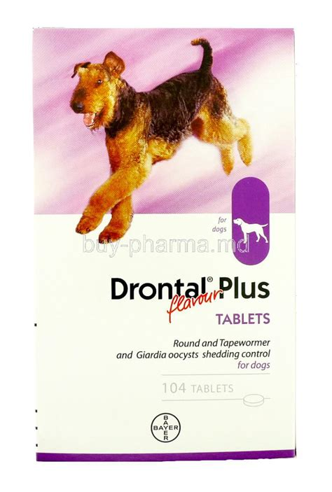 Drontal Plus Flavour For Dogs 120 Tablets drontal allwormer flavour for buy drontal allwormer