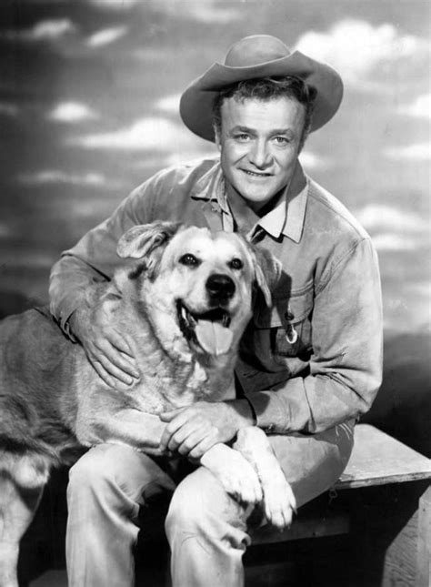 all famous dog names from tv movies politics books and spike dog wikipedia