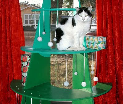are christmas trees poisonous to cats like kittysville diy climbable tree