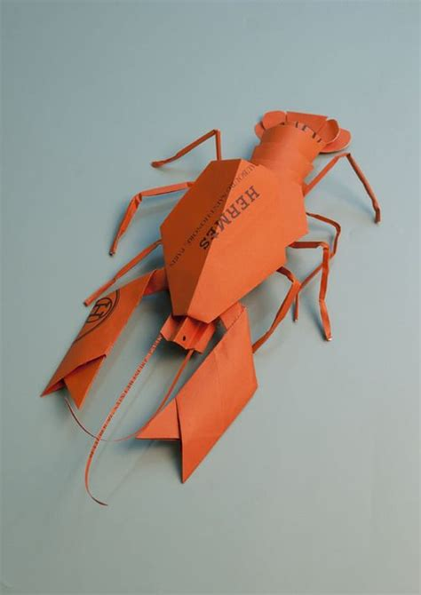 Origami Lobster - 17 best images about lobster on elsa
