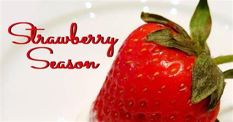 strawberry season in arkansas tie dye travels with kat robinson arkansas s most respected