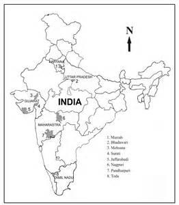India Map Outline by India Map Outline
