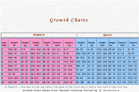 german shepherd growth chart organization chart