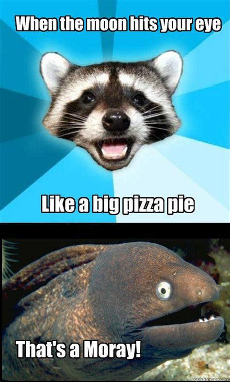 Bad Pun Raccoon Meme - lame pun duet memes quickmeme