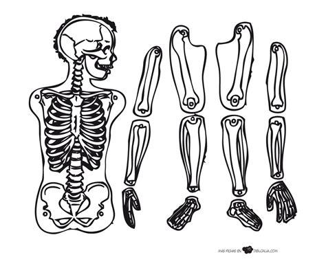 imagenes de calaveras y esqueletos para colorear recortable esqueleto dibujalia dibujos para colorear