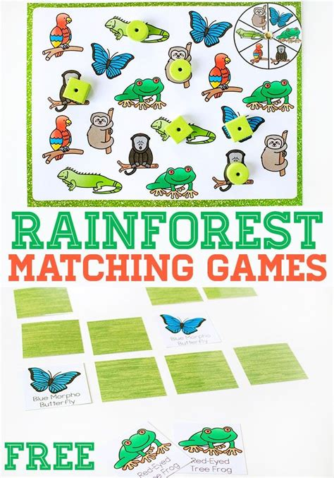 printable rainforest animal cards 128 best images about amazon rainforest on pinterest