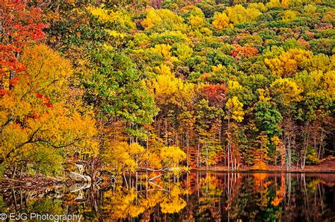 maryland foliage map maryland fall colors flickr photo