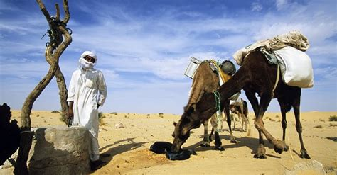 algeria visa passport health passports and visas