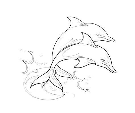 dolphin coloring pages 6 coloring kids