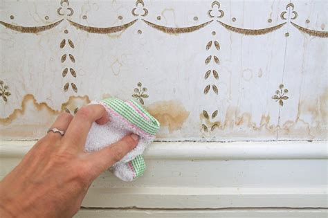 clean wall stains domestic science tip how to remove water stains from