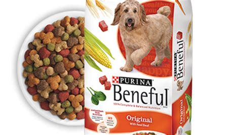 beneful puppy dangerous food lawsuit claims beneful sickened killed pets cbs news