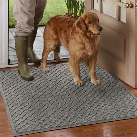 mud rugs for dogs mud rugs for dogs rugs ideas