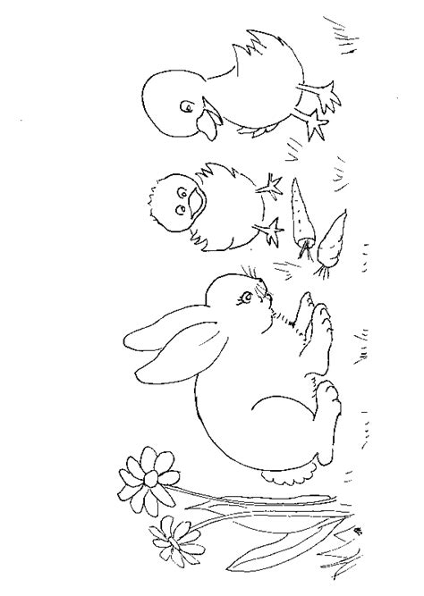 benjamin bunny coloring pages benjamin peter rabbit coloring pages