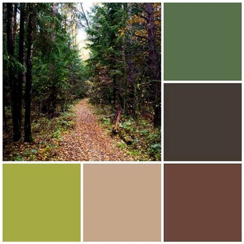 1000 images about forest color schemes on green summer 2015 and