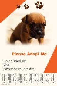 Pets Flyer Templates Postermywall Adopt Me Flyer Template
