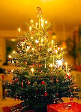 weihnachtsbaum wiktionary