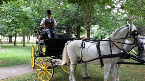 carrozza a cavalli tour in carrozza d epoca in occasione di castelli aperti