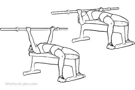 underhand grip bench press underhand grip barbell bench press workoutlabs