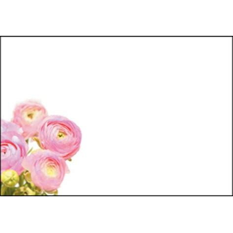 Pink Gift Card Balance - oasis pink ranunculus gift cards x 50 163 0 99 inspirations wholesale