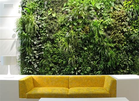 Indoor Wall Garden by Living Wall Products Archives Living Walls And Vertical