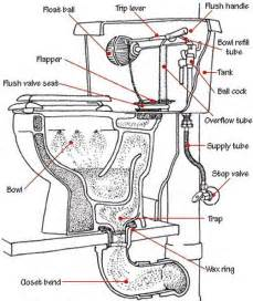 Plumbing A Bathtub Drain And Overflow Toilet Is Not Clogged But Drains Slow And Does Not