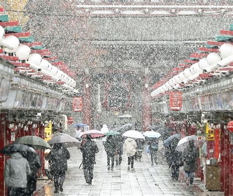 november tokyo tokyo which hasn t seen november snow in over 50 years
