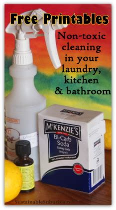 best non toxic bathroom cleaner sustainable suburbia healthy family healthy world