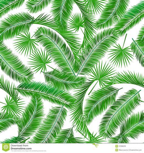 leaf pattern wiki palm tree leaves pattern