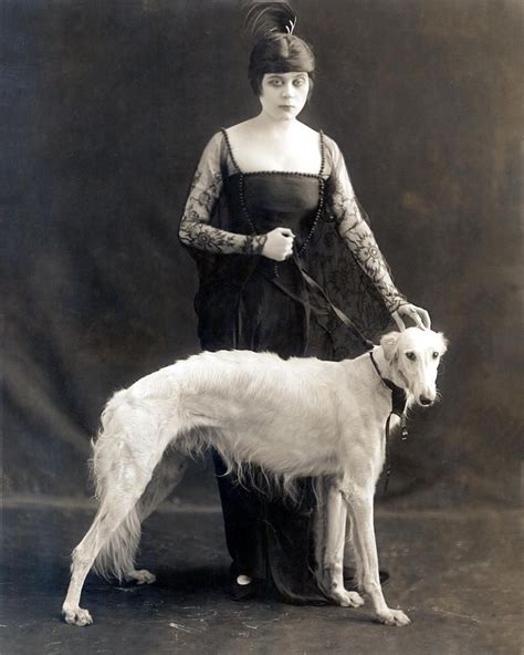 russian wolf theda bara vintage dogs