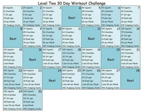 level two 30 day workout challenge fitness