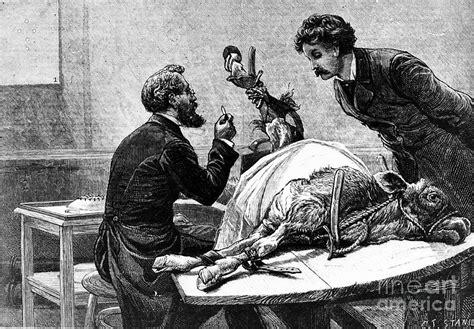 Home Decor Craft Blogs smallpox vaccine 1883 photograph by granger