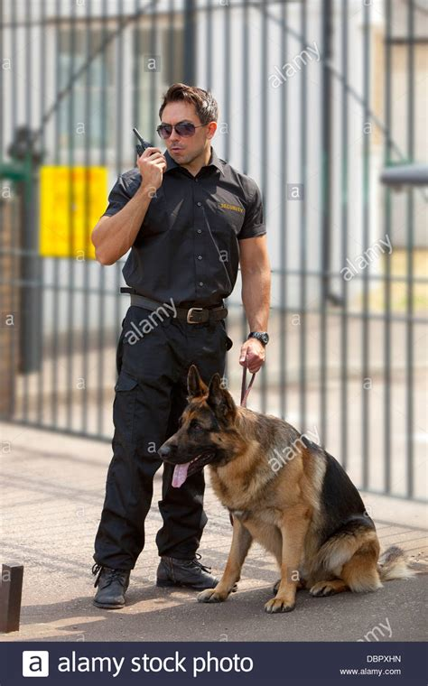 how to a german shepherd guard security guard on radio with german shepherd guard stock photo royalty free image
