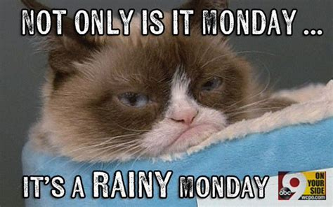 Rainy Day Meme - megan fenno on twitter quot rain on a monday morning making