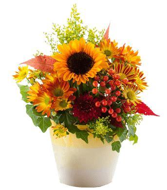 fiori domicilio roma faxiflora 174 catalogo fiori a domicilio