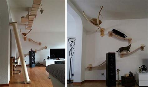 Cat Meowing At Ceiling by Goldtatze Cat Heavens And Trees Are The Coolest Pet Products