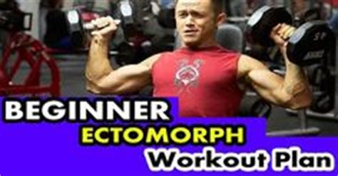 beginner ectomorph workout plan ectomorph zone