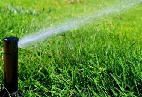 come irrigare un giardino irrigazione giardino fai da te impianto irrigazione