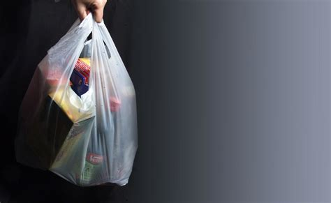 Bag Borrow Or Store Dont You Just The Idea by Plastic Bag Ban Doubts The West Australian