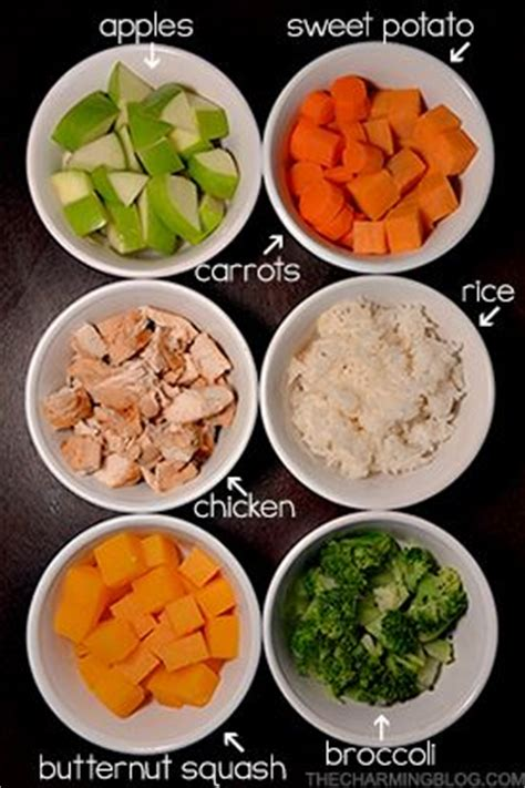 healthy snacks for dogs best 25 food recipes ideas on healthy foods for dogs carrots for