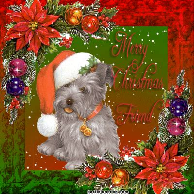 cute dogs  christmas quotes quotesgram