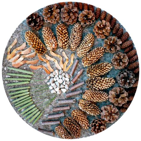 patterns in nature art activities michele made me pebbles and pinecones a family game