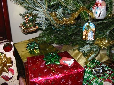 best way to water a christmas tree best 25 tree watering system ideas on ornament tree tree decorations and