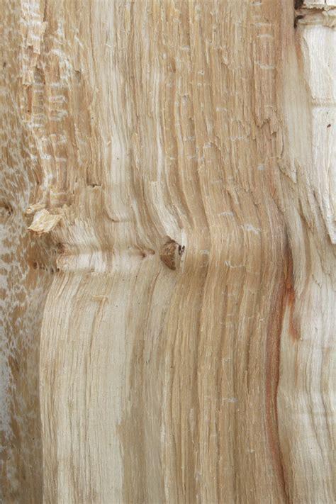 Textured Laminate Flooring Birch   Taraba Home Review