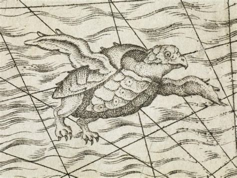 libro sea monsters on medieval 17 best images about woodcuts on middle ages medieval and dance of death